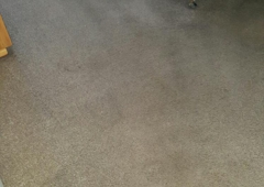 Cleaning Carpets Torrance Ca