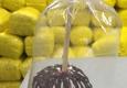 Great New Popcorn Company - East Meadow, NY