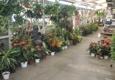 Moneta Nursery Inc. - Gardena, CA