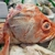 Fresh Meat Seafood Market