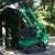 Coley Tree & Demoltion