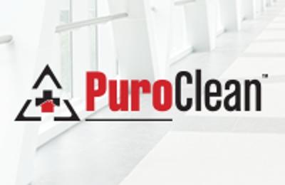 PURO CLEAN PROPERTY SAVERS - Austin, TX