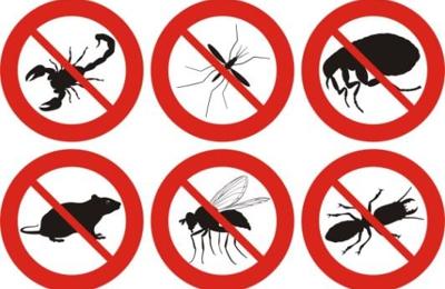 All American Pest Control - Great Falls, MT