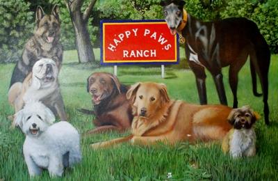 Happy paws ranchg boarding 8951 nalle grade rd north fort myers happy paws ranchg boarding north fort myers fl solutioingenieria Choice Image
