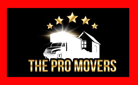 TheProMovers