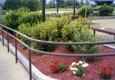 Ed's Landscaping & Tree Service, Inc. - Natick, MA