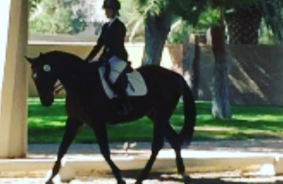 Talisman Farm - Las Vegas, NV. Dressage Lessons