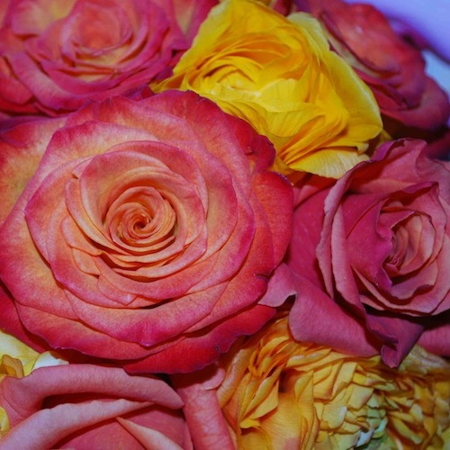 Yellow Vase 28902 S Western Ave Rancho Palos Verdes Ca 90275 Yp