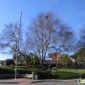 Union City Animal Control - Union City, CA