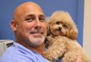 Dr Fox and his lil dog baby Romeo