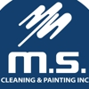 MS Cleaning  & Painting