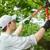 Bostwick Tree Service LLC