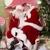 Kathy's Kopies Plus & Santa's Chest