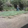 Valley Sod Farm Inc.