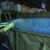 Ken Brown Pool