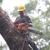 Coast to Coast Tree Service