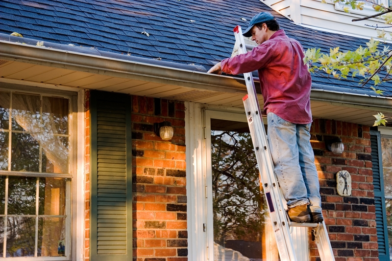 A ladder helps homeowners find leaks and other problem areas.