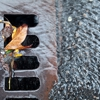 Express Drain & Sewer Cleaning