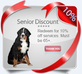 veterninary coupon new client