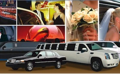 All Airport Sedan & Limousine Service