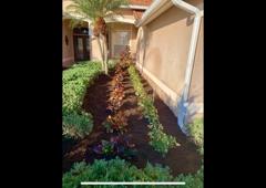 Willis Lawn and Landscape - Sarasota, FL. Sarasota landscape install