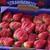 Florida Strawberry Festival