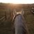 Soaring Eagle Stables & Equestrian Center