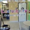 Cactusberry+ Frozen Treats
