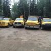 Fairbanks Stump Grinders