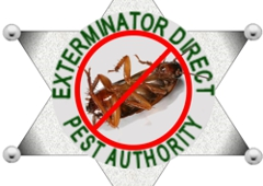 Exterminator Direct. Providing PEt Control & Exterminator Services for Long Island for 25 Years