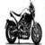 Bill's Motorcycle Salvage - White City, OR