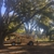 Brown's Tree Service and Land Clearing