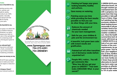 2 Green Guys Lawn Painting Service - Boca Raton, FL