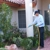 Southern Green Lawn & Shrub Care