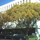 Berkeley Learning Center