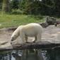 Columbus Zoo - Columbus, OH