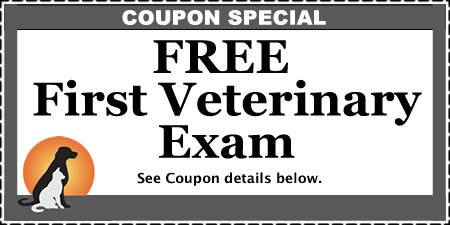 athens animal clinic coupon 1