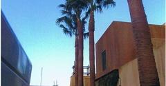 Knock-Em-Out Inc. Tree Service - El Cajon, CA