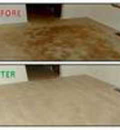 carpet cleaning moreno valley ca 92551 moreno carpet cleaners valley ca 25591 clifton ct 92553