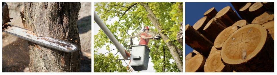Logging service