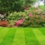 Stanley's Simply Green Lawn Maintenance & Landscaping