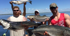 Sea Sprite Sport Fishing - Old Saybrook, CT