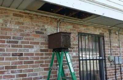 Aa Live Bee Removal 230 River Point Dr Destrehan La 70047 Yp Com