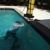 Clear Results Pool Services llc