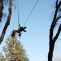 Community Tree LLC