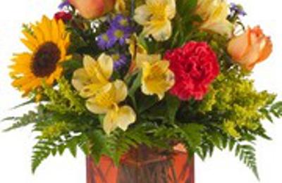 Stephenson flowers harrisburg pa