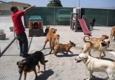 Dog House Inn - Gilroy, CA