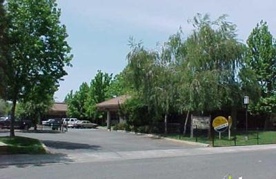Nami - Sacramento, CA