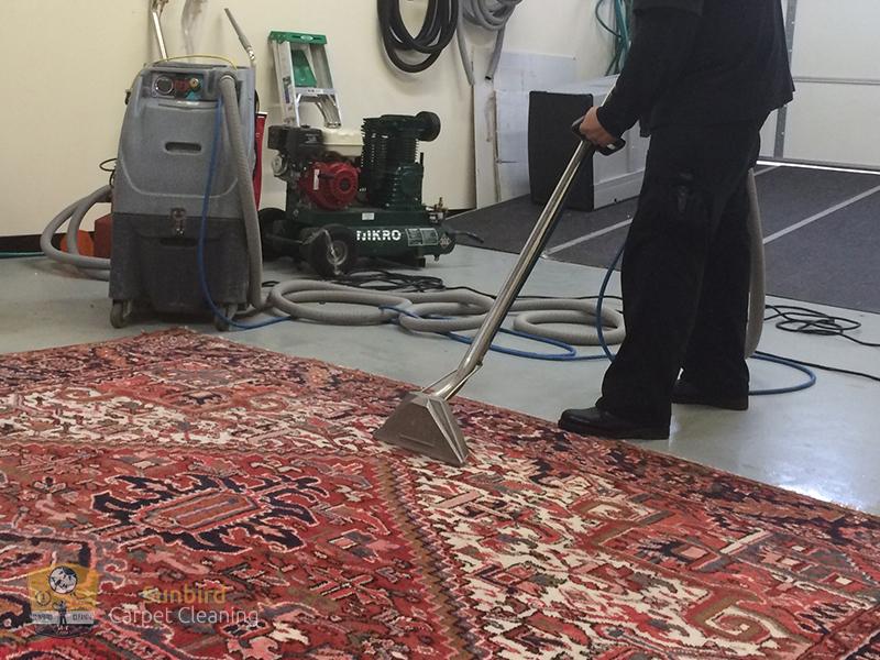Sunbird Carpet Cleaning 1101 Hillcrest
