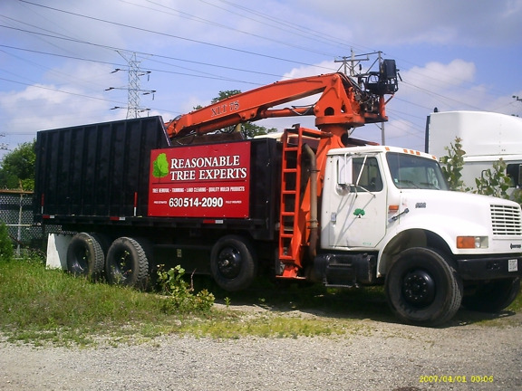 Reasonable Tree Experts - Crest Hill, IL